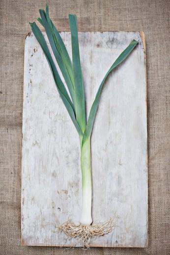 Scallion on wooden board : Stock Photo