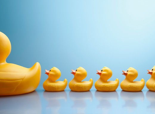 Stock Photo: 1775R-22853 Mother rubber duck leading several rubber ducklings