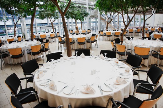 Stock Photo: 1775R-23224 Empty chairs and tables set for luncheon