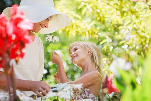 Stock Photo: 1775R-25123 Grandmother and granddaughter picking flowers in garden