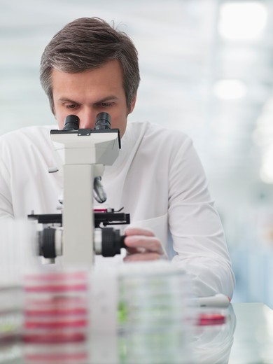 Stock Photo: 1775R-26135 Scientist using microscope in lab