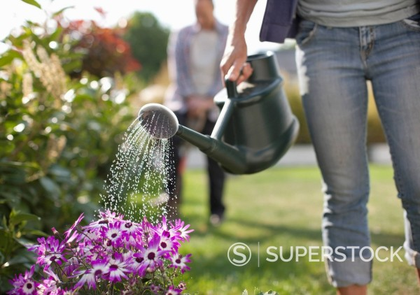 Stock Photo: 1775R-27812 Woman watering flowers in garden with watering can