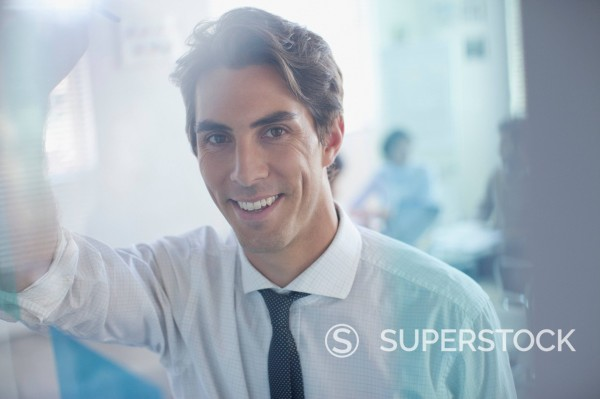 Portrait of smiling businessman in office : Stock Photo