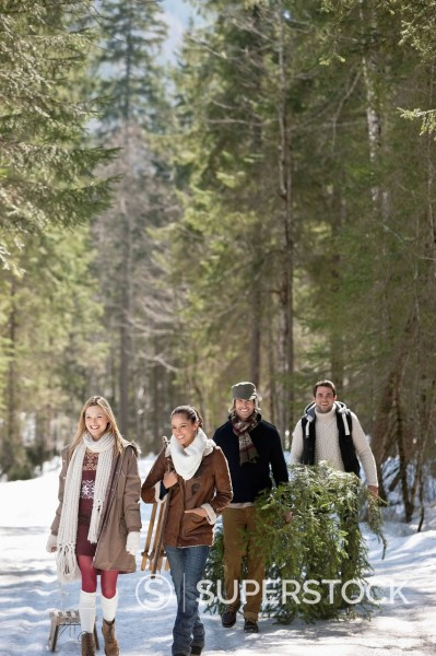Stock Photo: 1775R-30976 Smiling couples with fresh cut Christmas tree and sled in snowy woods