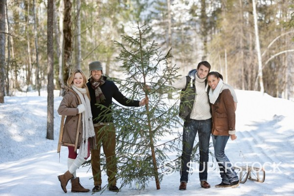 Stock Photo: 1775R-31023 Portrait of smiling couples with fresh cut Christmas tree and sled in snowy woods