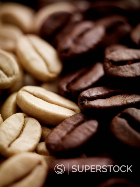 Close up of light and dark coffee beans : Stock Photo