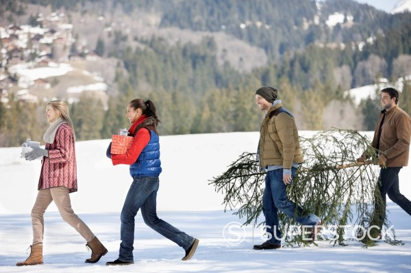 Couples and dog carrying fresh cut Christmas tree and gifts in snow : Stock Photo