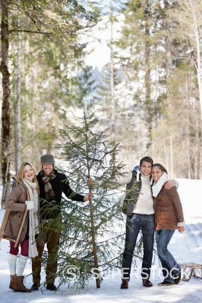Stock Photo: 1775R-31244 Portrait of smiling couples with fresh cut Christmas tree in woods