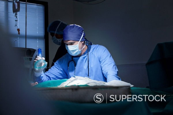 Surgeon holding oxygen mask over patient in operating room : Stock Photo