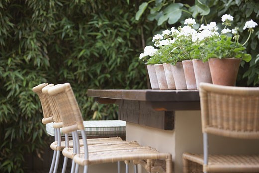 Outdoor bar with potted plants on it : Stock Photo