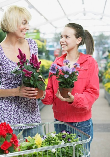 Woman and girl shopping for plants : Stock Photo