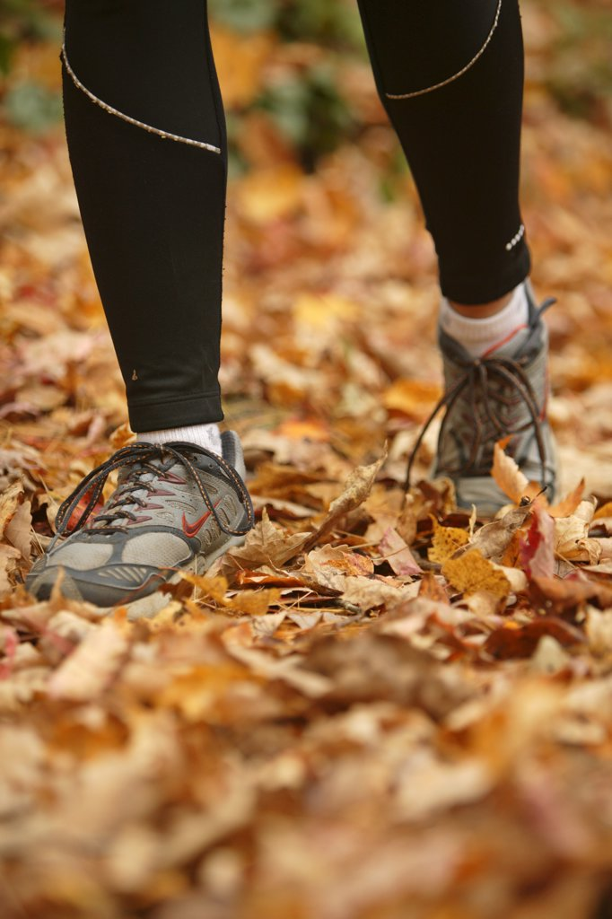 Rose Cowles runs through the fall leaves on the Boogerman Loop trail in the Cataloochee area of the Great Smoky Mountains Nation : Stock Photo