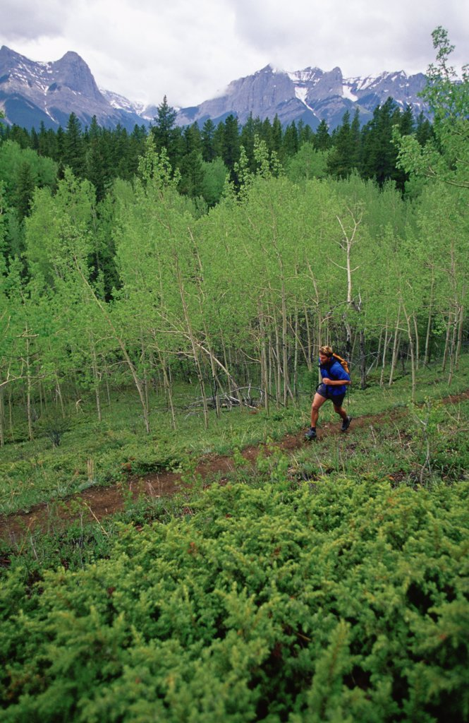 Stock Photo: 1778-9628 Man trail running in Canadian Rockies