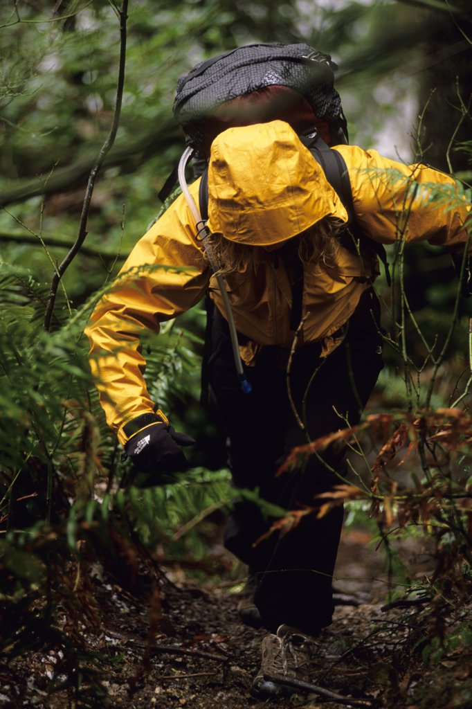 Stock Photo: 1778-9957 Woman hiking in the rain Port Coquitlam, British Columbia