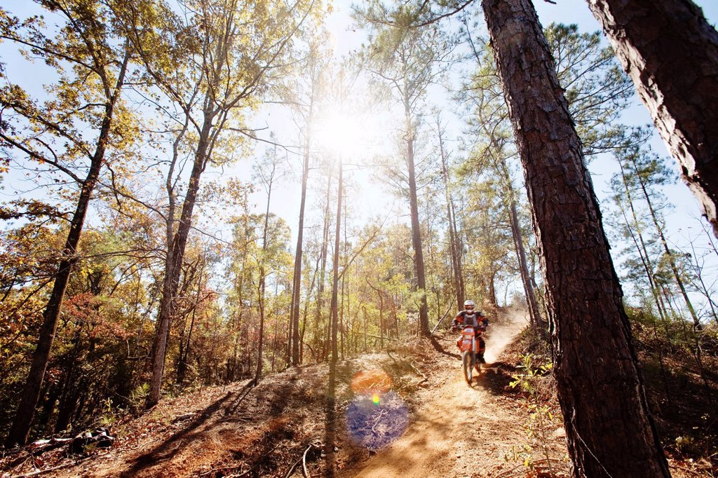 Stock Photo: 1778R-20928 A motorcyclist rides a dirt trial on top of a hill in an Enduro race in Maplesville, Alabama. Back Lit, Lens Flare, Motion Blur
