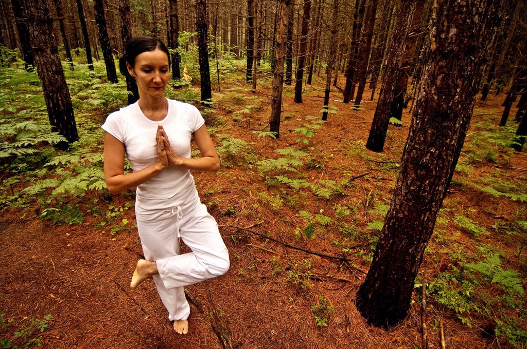 Woman in a yoga pose in a burned forest. : Stock Photo