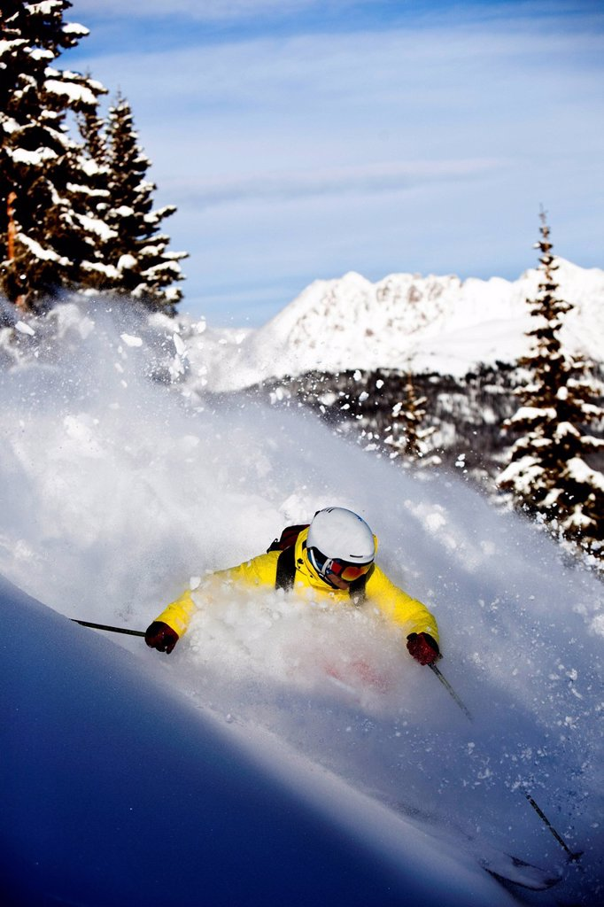 Stock Photo: 1778R-26532 A athletic skier rips fresh powder turns in the backcountry on a sunny day in Colorado.