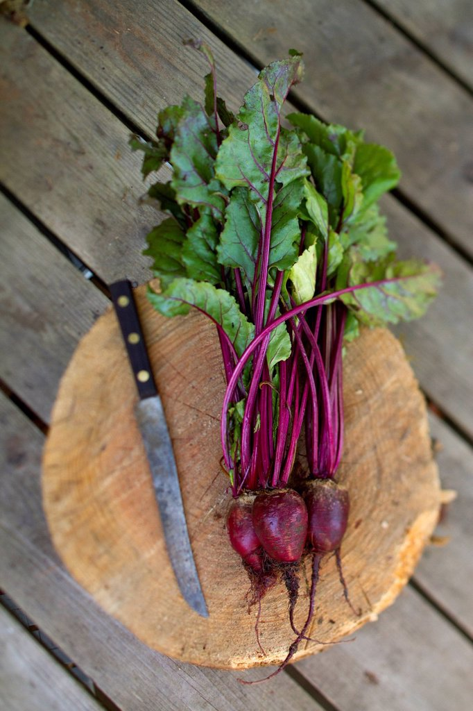 Stock Photo: 1778R-27806 Still life of beets and knife.