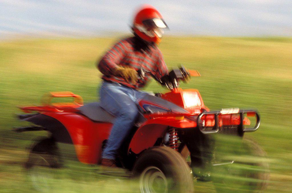 ATV driver riding fast through field. : Stock Photo