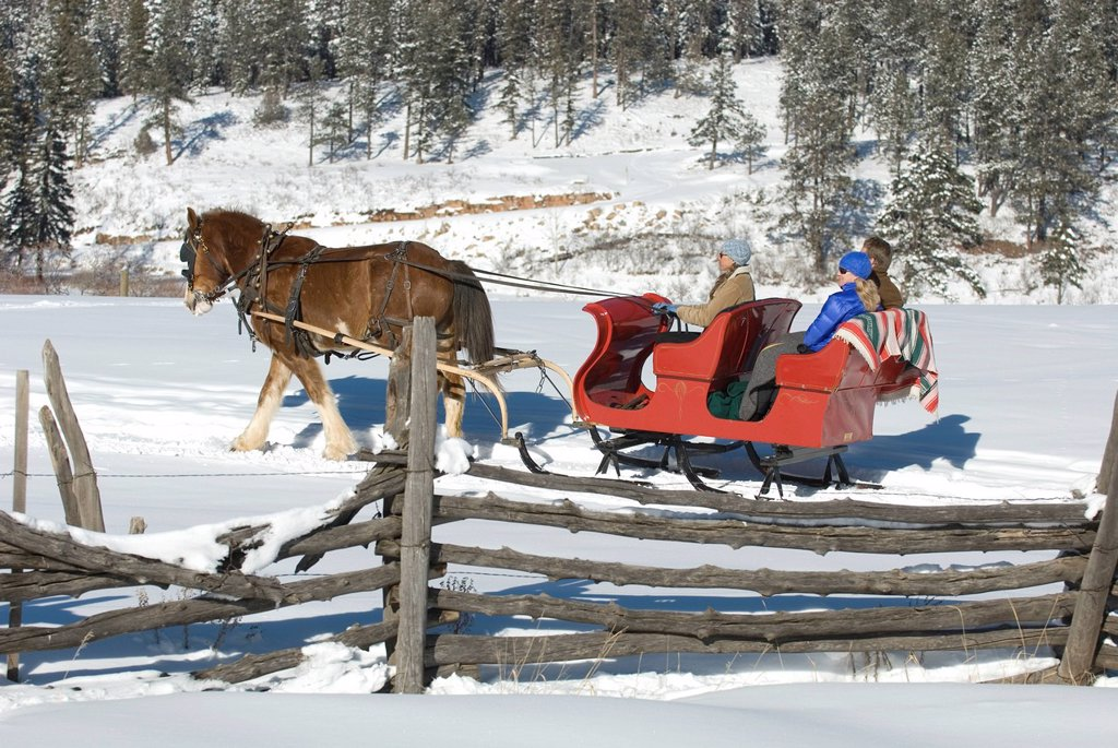 Stock Photo: 1778R-3738 Three people riding sleigh.