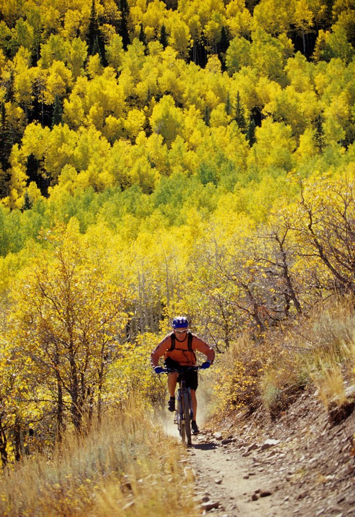 Man fall mountain biking in Park City, Utah. : Stock Photo