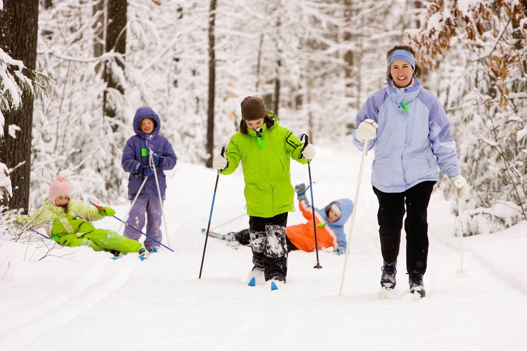 Stock Photo: 1778R-5993 A family group Cross Country Skiing in Dayton, Maine.