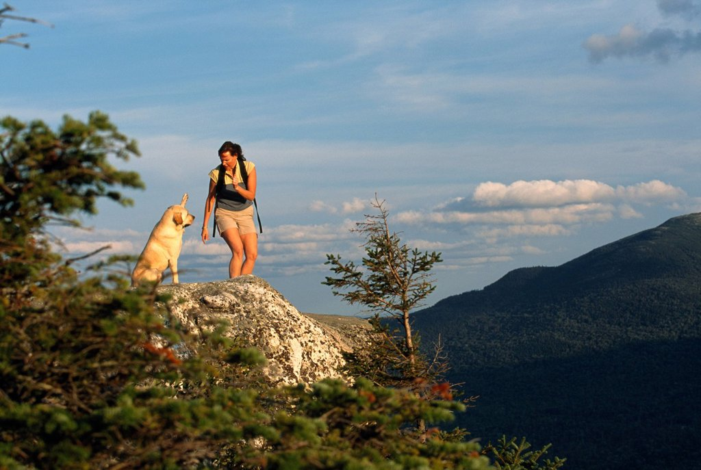 Stock Photo: 1778R-6037 A woman and a dog on a mountain top, Newry, Maine.