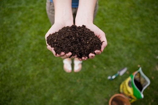 Woman holding handfuls of dirt : Stock Photo