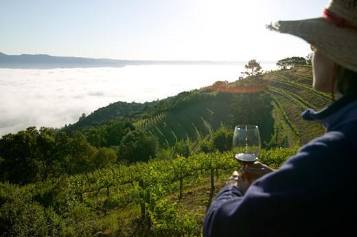 Stock Photo: 1779R-14266 Woman drinking wine, Mountain Vineyard, Napa Valley, California