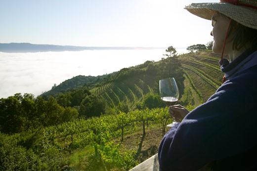 Stock Photo: 1779R-14267 Woman drinking wine, Mountain Vineyard, Napa Valley, California