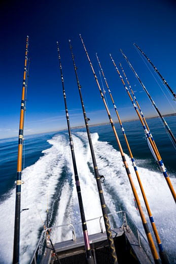 Fishing poles by water : Stock Photo