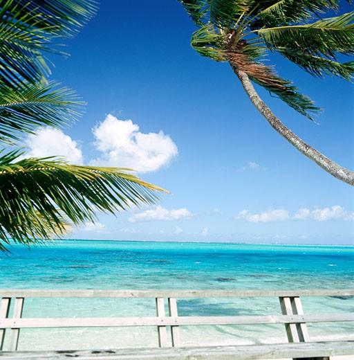Stock Photo: 1779R-19442 Tropical beach