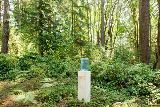 Water cooler in woods : Stock Photo