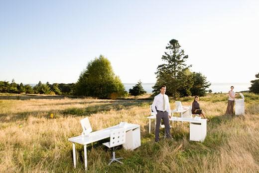 Stock Photo: 1779R-23293 Businesspeople in sunlit field