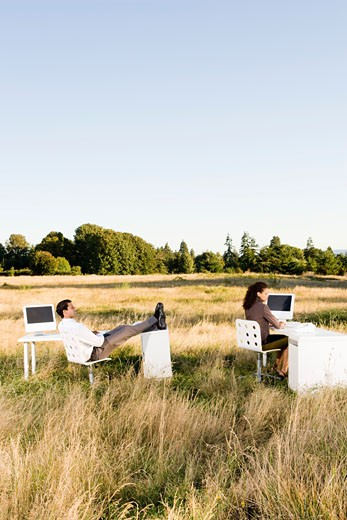 Businesspeople at desks in field : Stock Photo