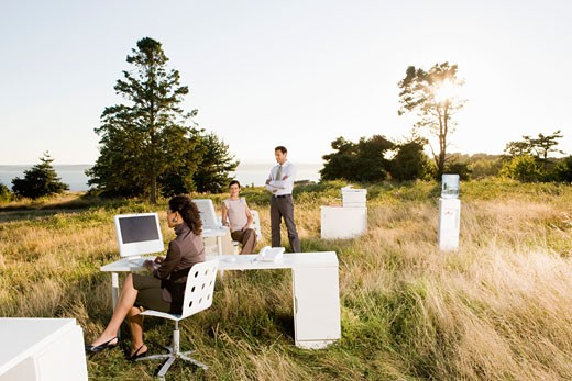 Businesspeople working in field : Stock Photo