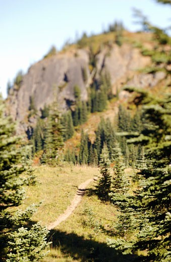 Dirt path in mountain setting : Stock Photo