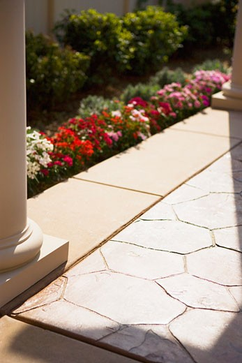 Detail of backyard tiling : Stock Photo