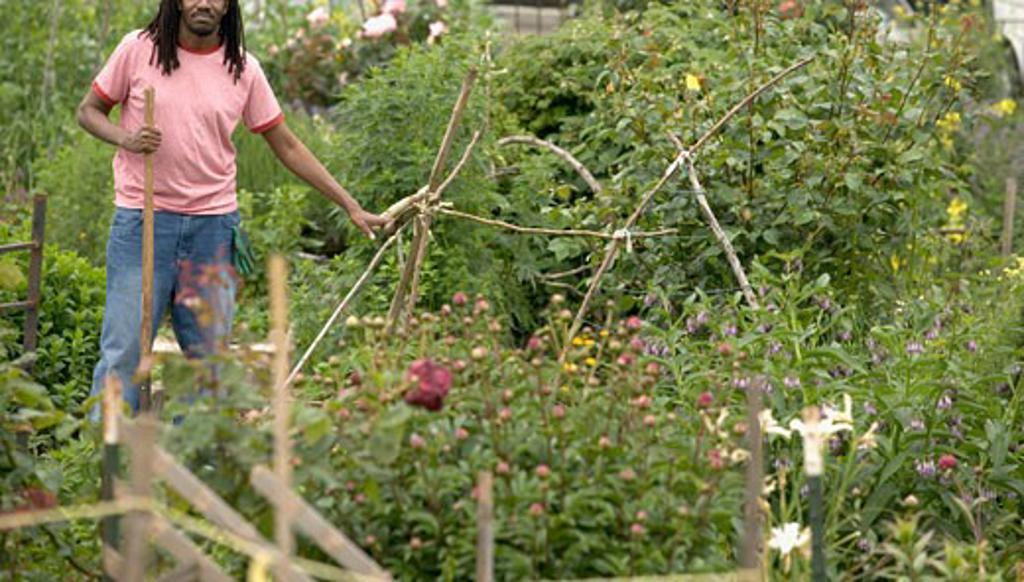 Stock Photo: 1779R-4094 African man gardening
