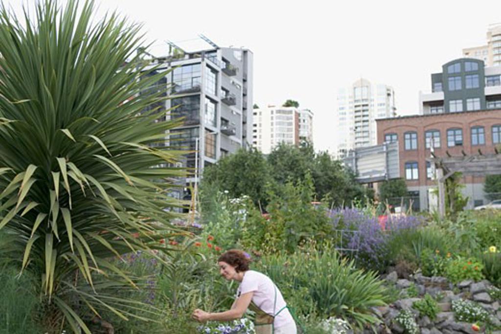 Woman in urban garden : Stock Photo