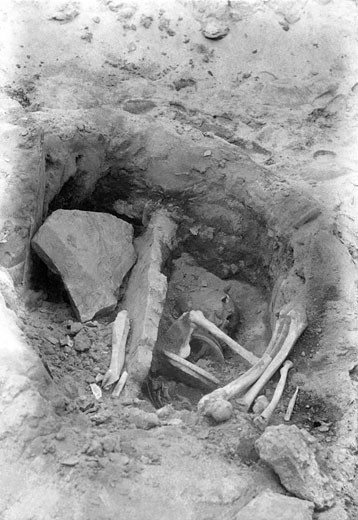 Harlyn Bay, the Excavations 1901 : Stock Photo