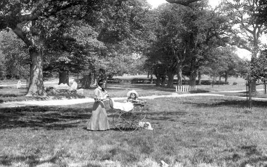 Frimley, Pram in the Grove 1906 : Stock Photo