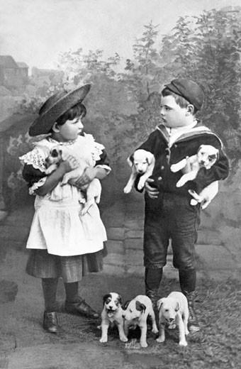 Mine's Best 1894 : Stock Photo