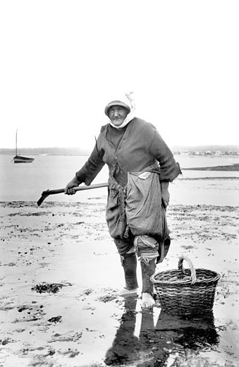 Exmouth, a Cockle Woman 1906 : Stock Photo