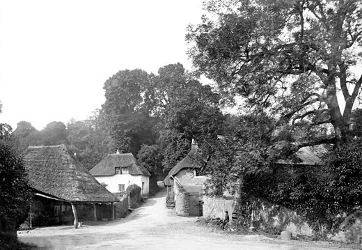 Cockington, the Village 1889 : Stock Photo