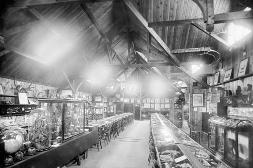 Haslemere, the Museum 1899 : Stock Photo