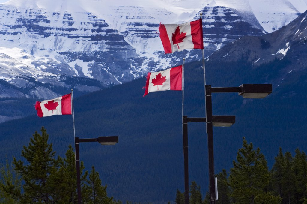 Stock Photo: 1783-10443 Canadian flags flying in the wind., Canadian Rockies, Canada.