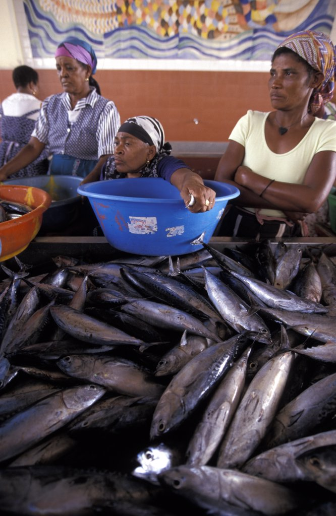 Stock Photo: 1783-11250 Women holding bowls at Fish Market, Mindelo, Sao Vicente, Cape Verde.