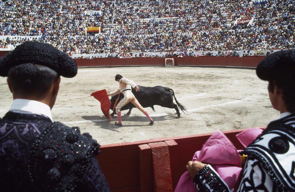 Stock Photo: 1783-11896 Bullfighting, Quito, Ecuador.