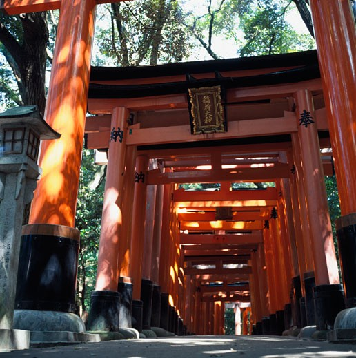 Stock Photo: 1783-16324 Red torii arches over a path at Inari Temple, Fushimi., Kyoto, Japan.